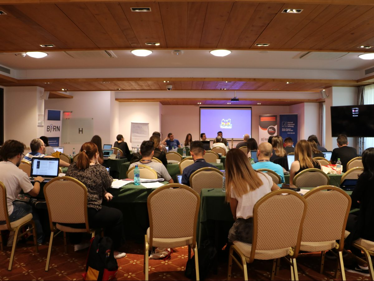 BIRN's Summer School Closes with Investigation Proposals